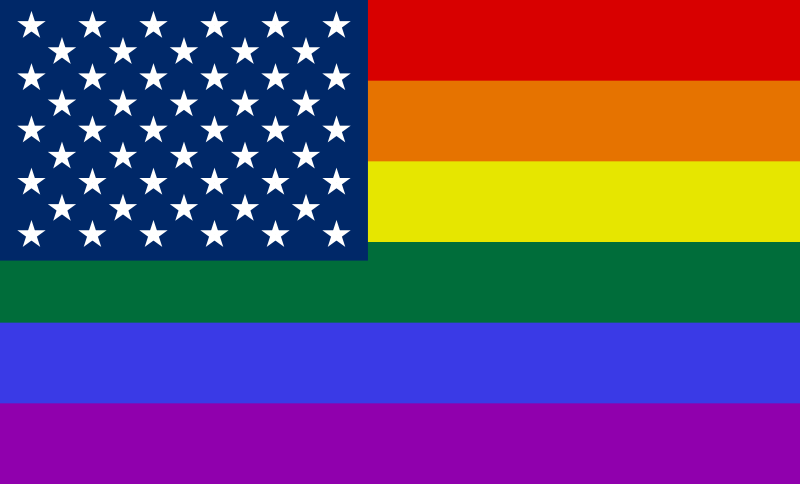 a look at the lgbt community in america Read about key moments in the history of the lgbt fight for equality in america   forward, it's also important to look back, and see how far we've come  history  that have strongly propelled the gay rights movement forward.