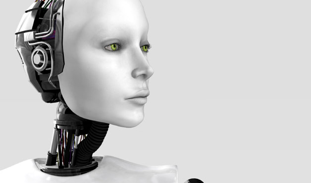 10-Weirdest-Things-You-Can-Rent-a-fembot-1