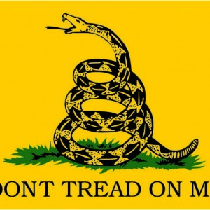 Decal-Don't tread on me.cdr