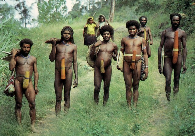 Dani people. Every tribe has a different penis sheath. Notice the differences?!