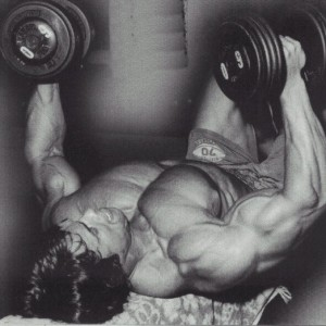 Arnold-Workout-2-600x523