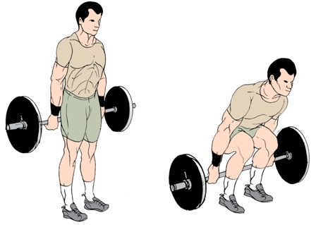 barbell-hack-squats