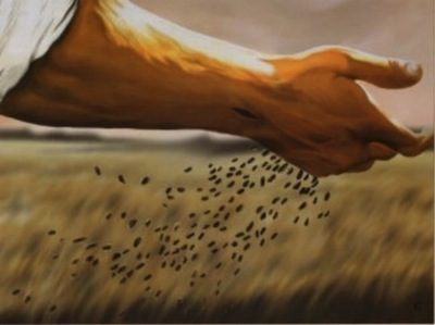 sowing-and-reaping