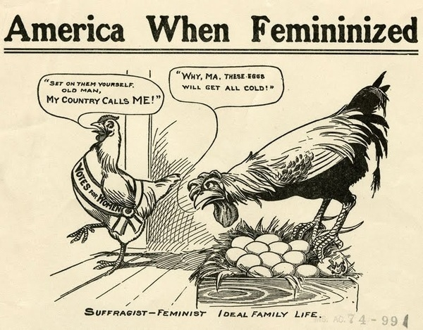A bit misandrist of the anti-suffragists if you ask me...