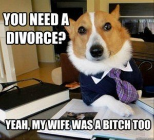 divorce-dog-meme