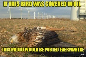 As long as a wind farm chops endangered species out of the sky, it's okay