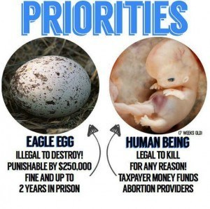Killing a fertilized human egg is less a concern than killing an eagle egg to the left