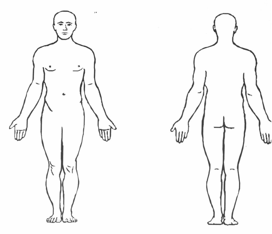 anatomical_position1317003355963