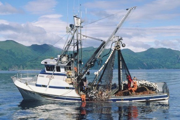how to become a commercial fisherman