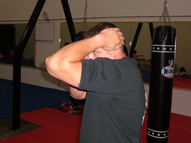 Learn krav maga free online introduction