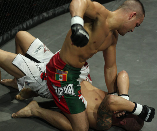 4. you can follow up by striking your opponent on the ground in order to end the fight