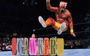 Hulk Hogan body slammed Gawker into Chapter 11