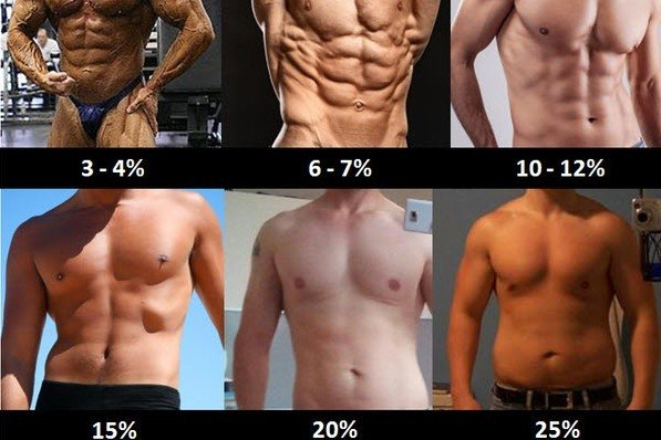 Estimate Your Body Fat