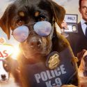 """Hollywood Movie """"Show Dogs"""" Has A Disturbing Scene That Grooms Little Children To Accept Sexual Abuse"""