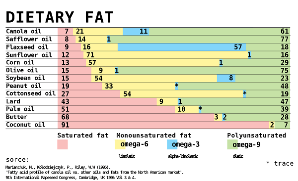 2000px Comparison of dietary fat composition svg - Fat does not make you fat